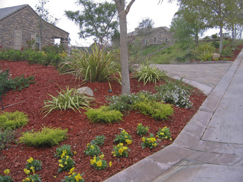 Low water landscaping ideas images frompo 1 for Ideas for low water landscapes