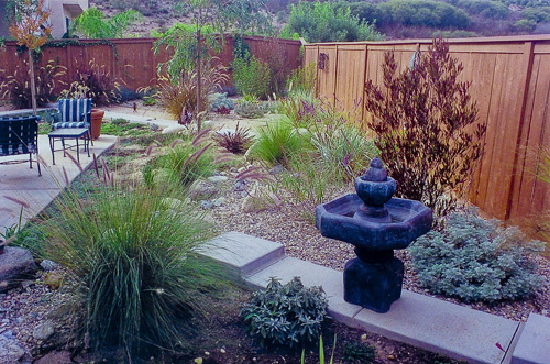 Xeriscaping Inspirational Landscaping Pinterest