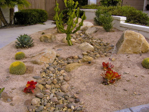 Photo gallery for Drought tolerant front garden designs